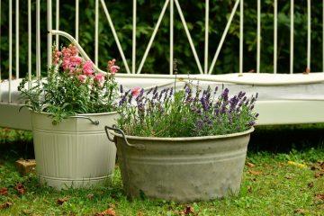 Wash Tub planter