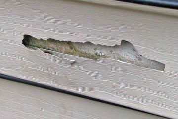 damaged vinyl siding