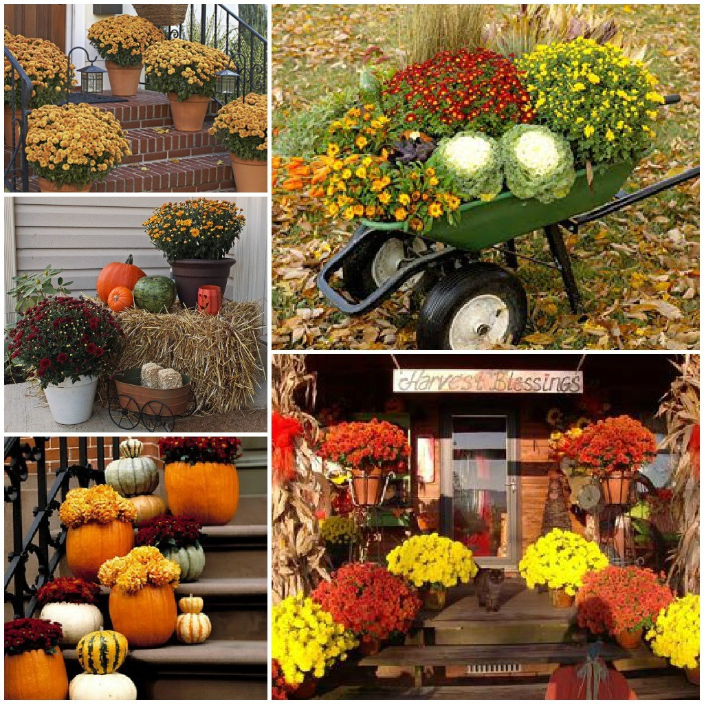 outdoor-fall-decor-mum-collage